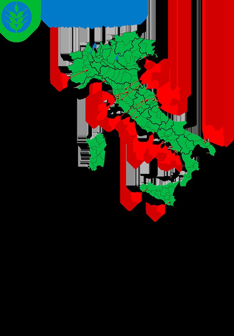Spighe-Verdi-2017